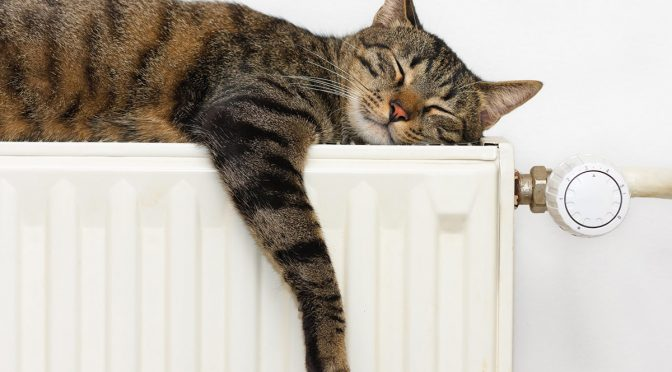 How to Prevent Home Radiators From Leaking or Rusting