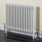 Phoenix Nicole School Radiators